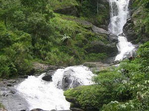 Irupu-Falls Tour Packages
