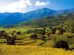 Araku-Valley Tour Packages