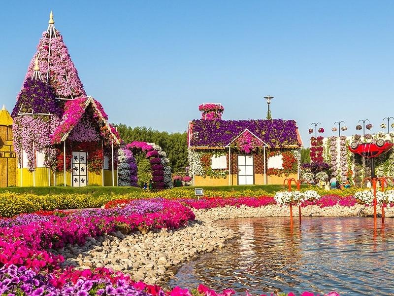 Dubai Miracle Garden Dubai Timings Entry Fee Best Time To Visit