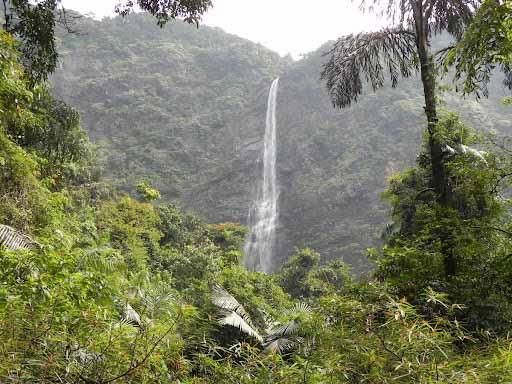 Kudumari / Chaktikal Waterfalls