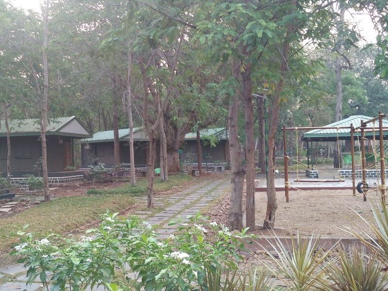 Bairluty Jungle Camp