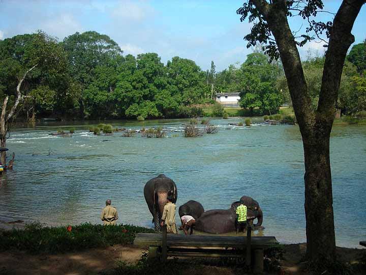 3 Day Trip in Coorg (madikeri) | Coorg - Iruppu Falls