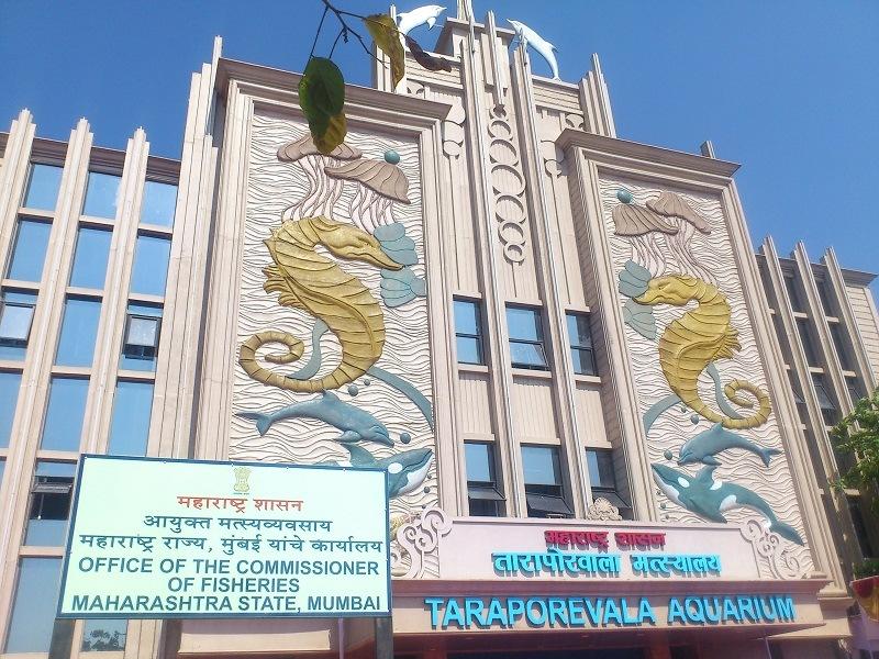 Taraporevala Aquarium
