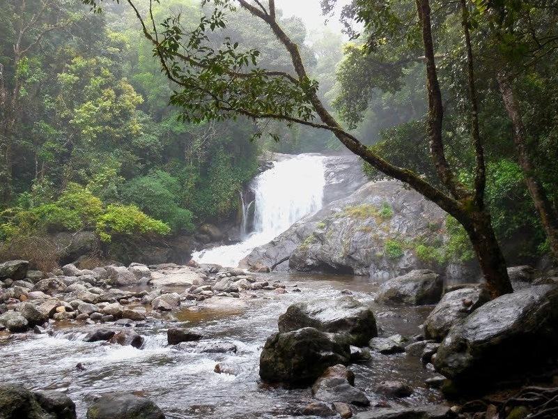Peerumedu waterfalls
