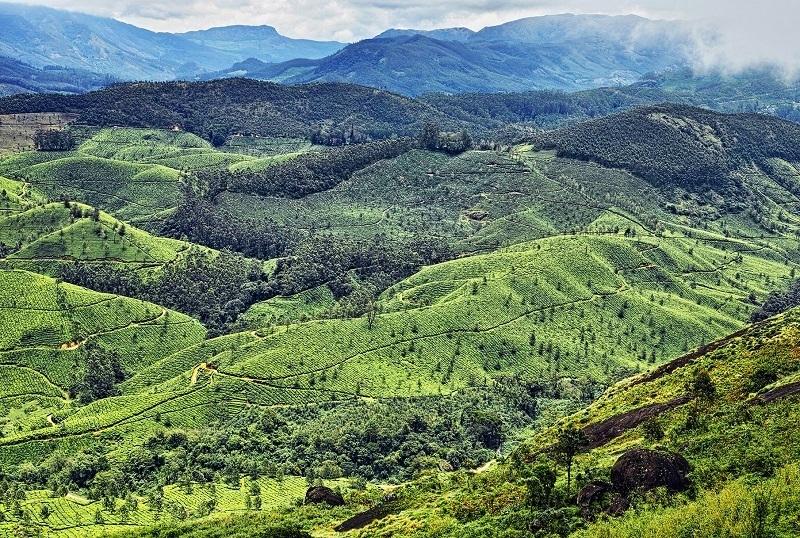 Pothamedu Viewpoint, Kerala