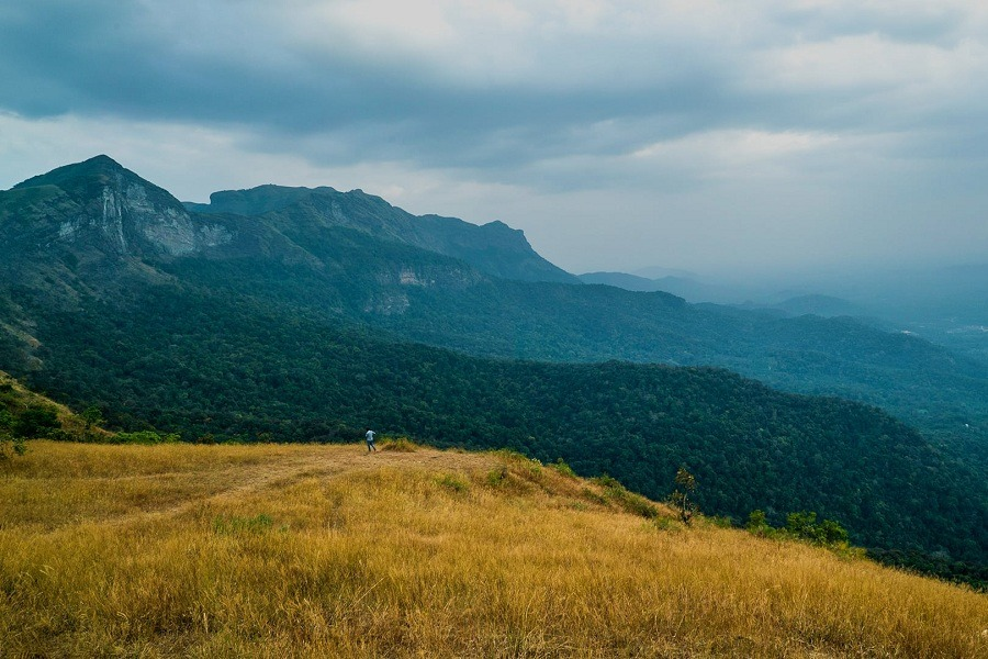 Trekking in Chikmagalur
