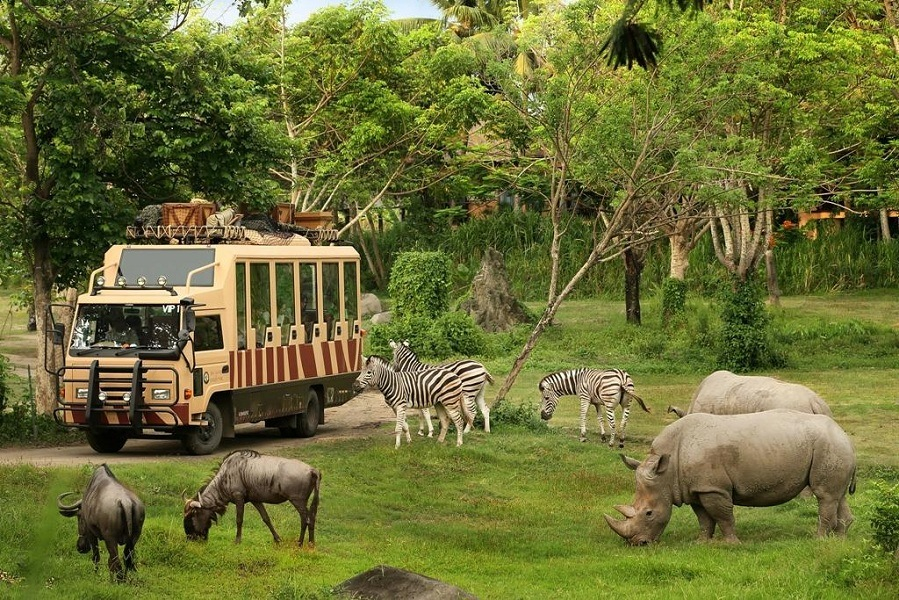 Safari_World